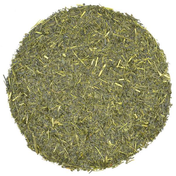Sencha Iizuka Fukamushi green tea