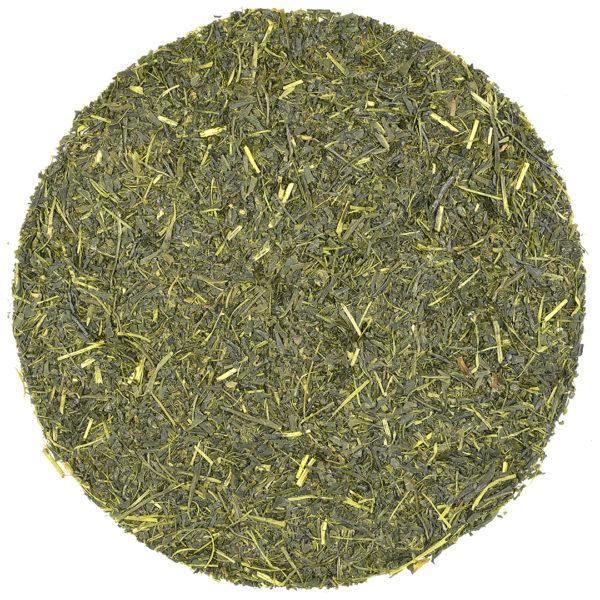 Sencha Iizuka Saemidori green tea