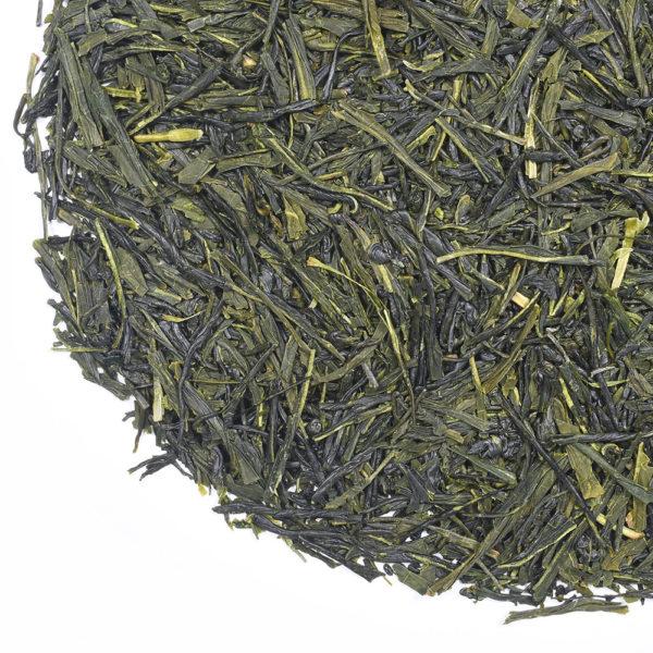 Sencha Saito Yumewakaba green tea