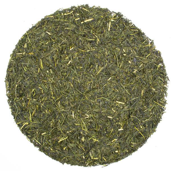 Sencha from 100 Year Old Trees green tea