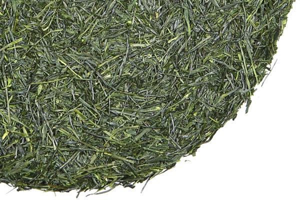 Shincha Moriuchi green tea
